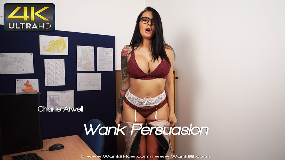 [Wank it now] Wank Persuasion 4K UltraHD 2160p